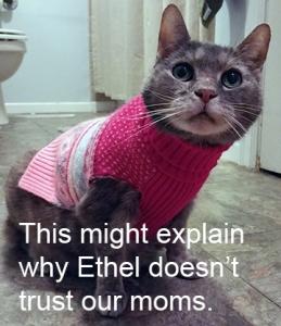 ethel-in-sweater