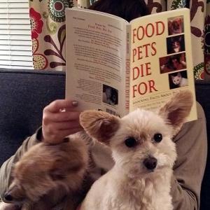 food-pets-die-for