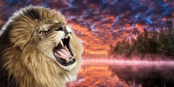 willow_inner-warrior-lion2
