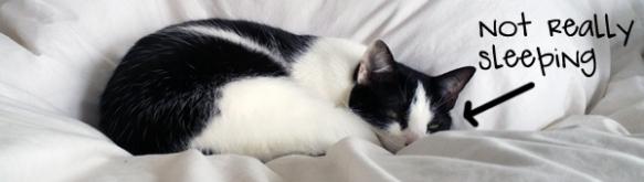 carol-sleep-half