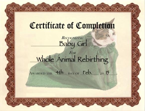 Rebirthing_Certificate
