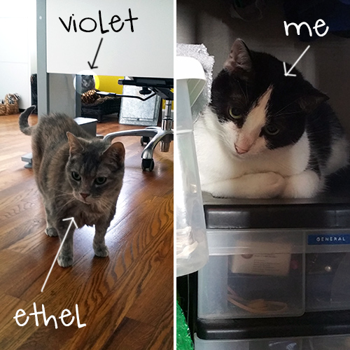 ethel_at-closet-door