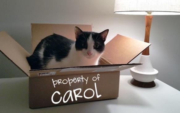 sugarship-carol-in-box