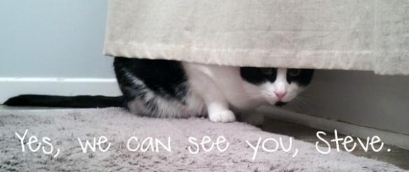 steve-hiding